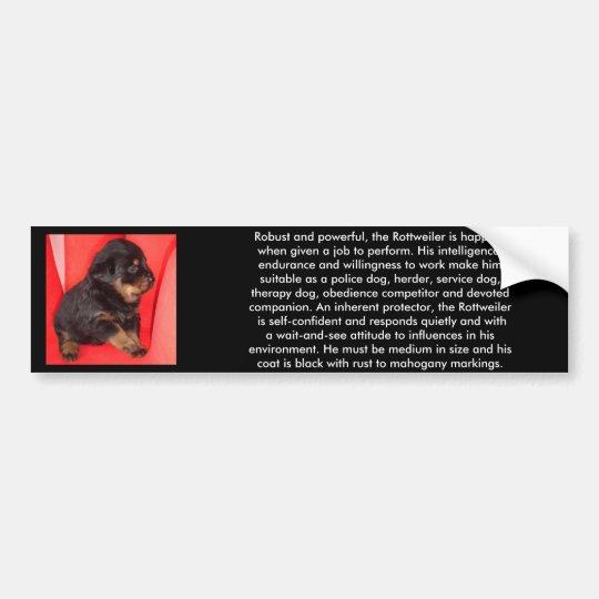 The Fur Ball Rottweiler Bumper Sticker