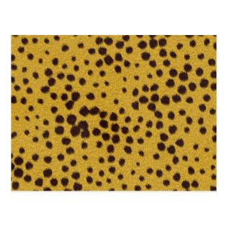 The fur collection - Cheetah Fur Postcard
