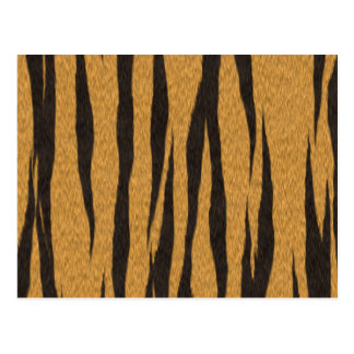The fur collection - Tiger Postcard