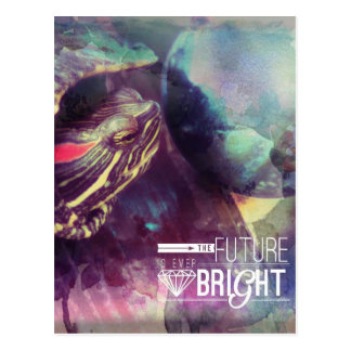 The Future is Bright, Myrtle the Turtle Postcard