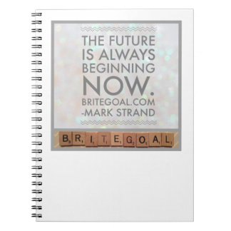 The Future is Now Notebook