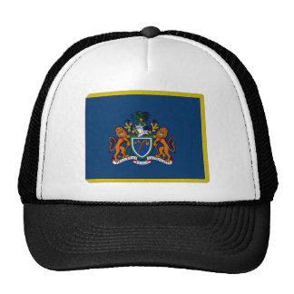 The Gambia President Flag Trucker Hat