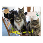 The Gang Happy Easter Postcard