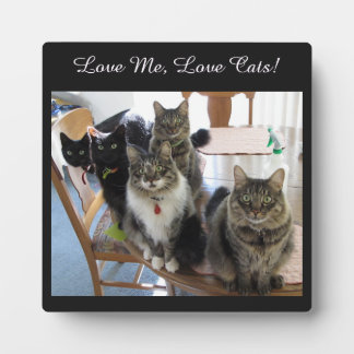The Gang Love Me Love Cats Photo Plaque