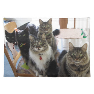 The Gang Placemat Cloth Placemat