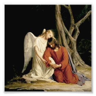 The Garden of Gethsemane (Luke 22:39-46) Photo Print