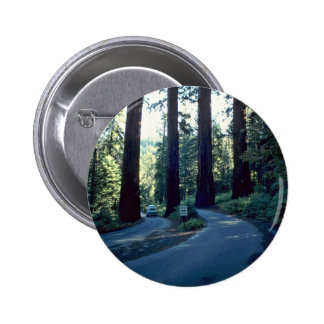 The Gateway Of Nature Pinback Button