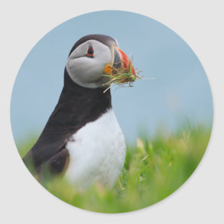 The Gatherer Puffin Classic Round Sticker