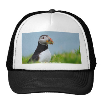 The Gatherer Puffin Trucker Hat