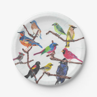 The Gathering Colorful Songbirds Paper Plate Set