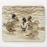 The Gathering Mouse Mats