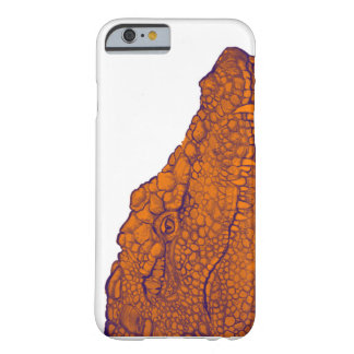 THE GATORS GLANCE BARELY THERE iPhone 6 CASE