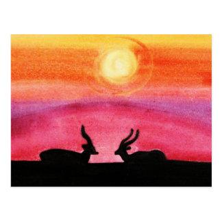 The Gazelles @ Sunset (Kimberly Turnbull Art) Postcard