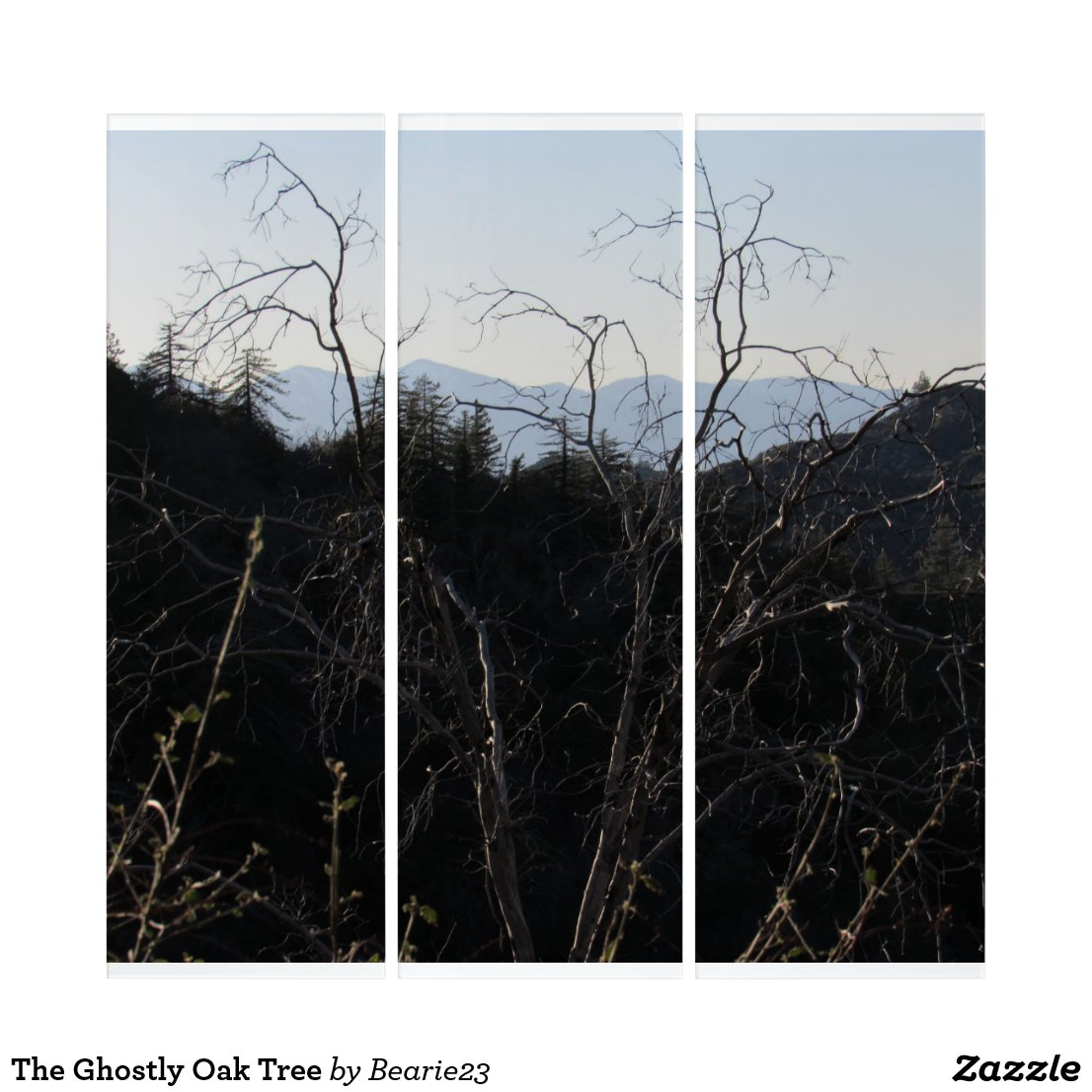 The Ghostly Oak Tree Triptych