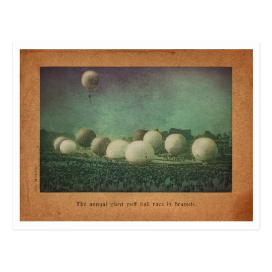 The Giant Puff Ball Race Postcard