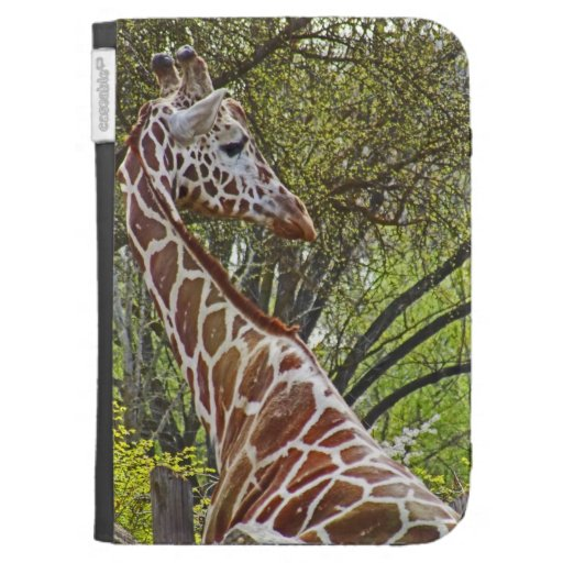 The Giraffe ~ Kindle Case Kindle 3 Cover
