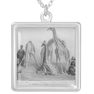 The Giraffes with the Arabs Silver Plated Necklace