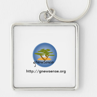 The GNU/linux gNewSense Pins Keychain