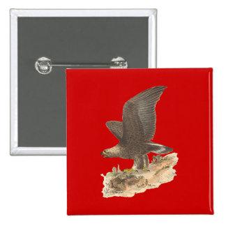 The Golden Eagle(Aquila chrysaetos) Buttons