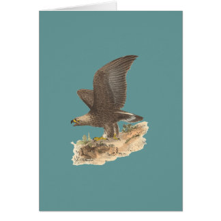 The Golden Eagle(Aquila chrysaetos) Greeting Card