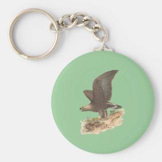 The Golden Eagle(Aquila chrysaetos) Key Chains