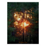 The Golden Forest Print