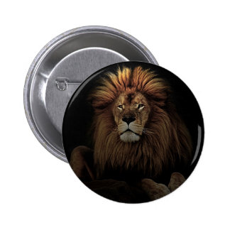 The golden lion pinback button