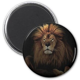 The Golden Proud  Lion Africa Magnet