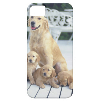 The Golden Retriever is a relatively modern and iPhone SE/5/5s Case