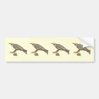 The Golden-winged Warbler(Vermivora chrysoptera) Bumper Sticker