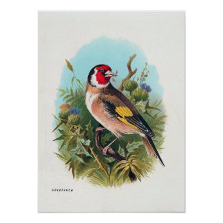 The Goldfinch Posters