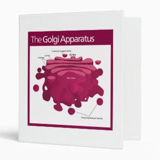 The Golgi apparatus Golgi complex Diagram Binder