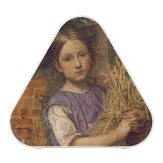 'The Good Harvest of 1854', 1854 Speaker