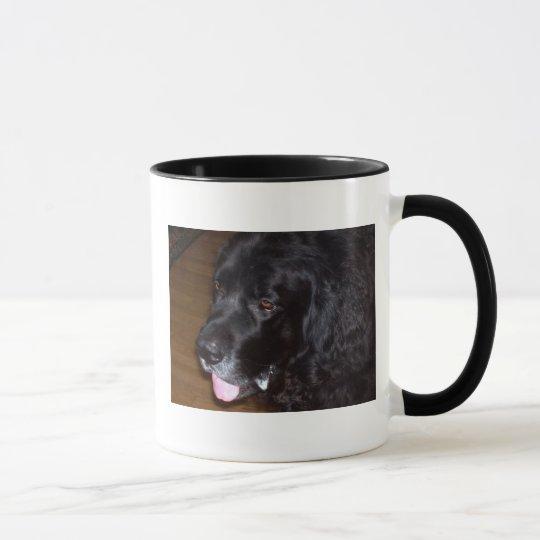 The Goofy Newfy Mug