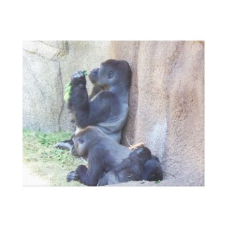 The Gorilla Family Canvas Prints