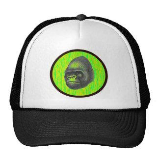 THE GORILLAS TERRITORY HAT