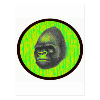 THE GORILLAS TERRITORY POSTCARD