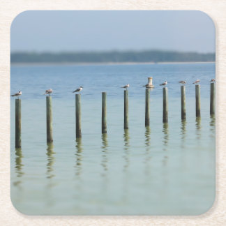 """The Gossip Line"" - Coastal Seagulls - Coaster"