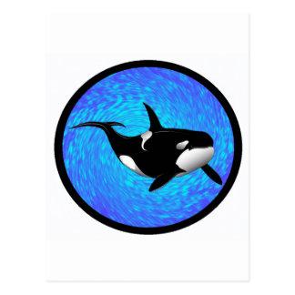 THE GRACEFUL ORCA POSTCARD