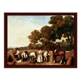 The Grain Harvest By Stubbs George Postcard