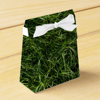 The Grass is Always Greener Favor Box