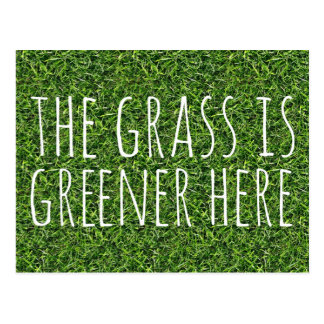 The Grass Is Greener Here Postcard