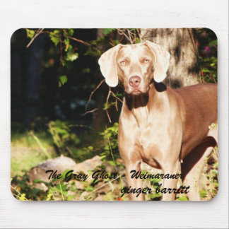 The Gray Ghost - Weimaraner, ginger ... Mouse Pads