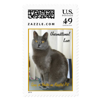 The Gray House Puma, UnconditionalLove, Spay or... Postage