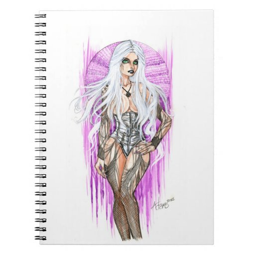 The Gray Witch Notebook