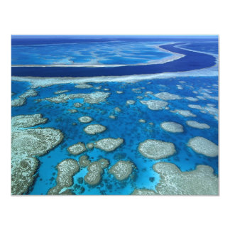 The Great Barrier Reef 4.25x5.5 Paper Invitation Card