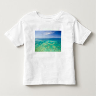 The Great Barrier Reef, aerial view of Green 2 Tee Shirt