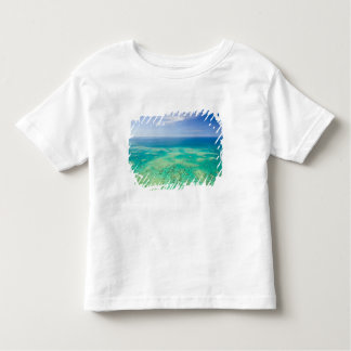 The Great Barrier Reef, aerial view of Green 2 Toddler T-shirt