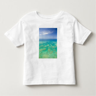 The Great Barrier Reef, aerial view of Green Tee Shirt