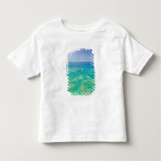 The Great Barrier Reef, aerial view of Green Toddler T-shirt
